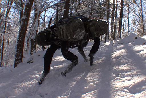 Big Dog en la nieve
