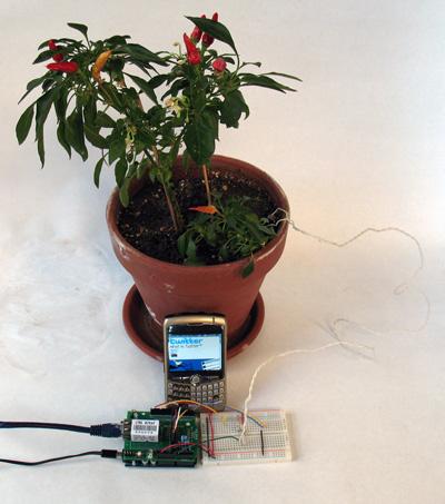 Arduino planta
