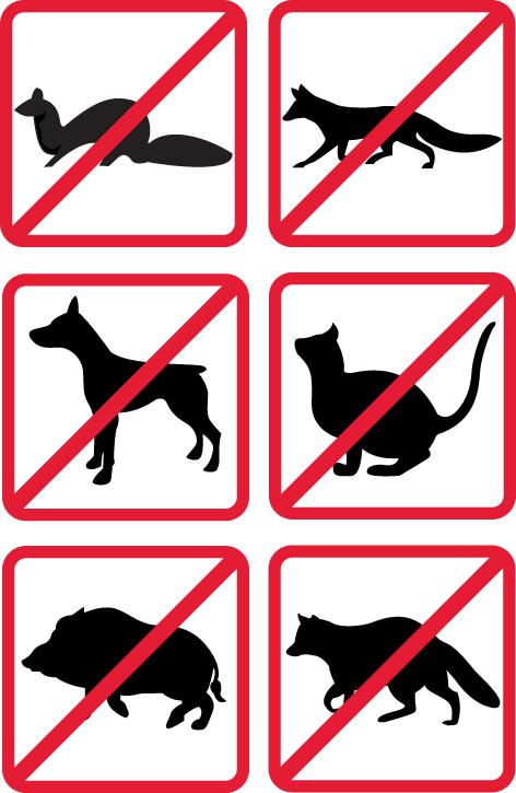 Los ahuyentadores no son lesivos para los animales ni para el medio ambiente.