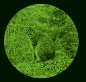 Mejor calidad y precio en vision nocturna en todoelectronica